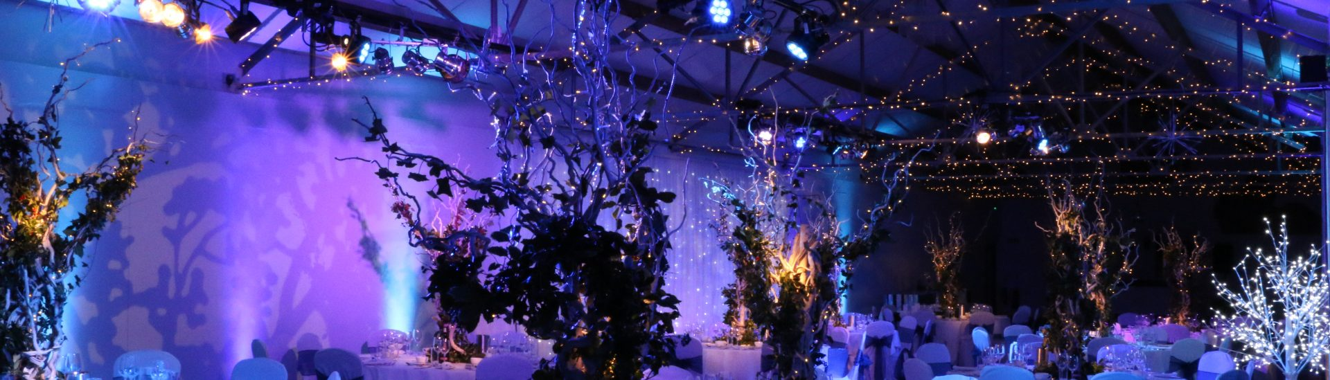 cropped-Christmas-Festive-Dinner-Party-Lighting-Hire-1.jpg